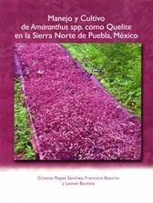Manejo y cultivo de Amaranthus spp. como quelite en la Sierra Norte de Puebla, México
