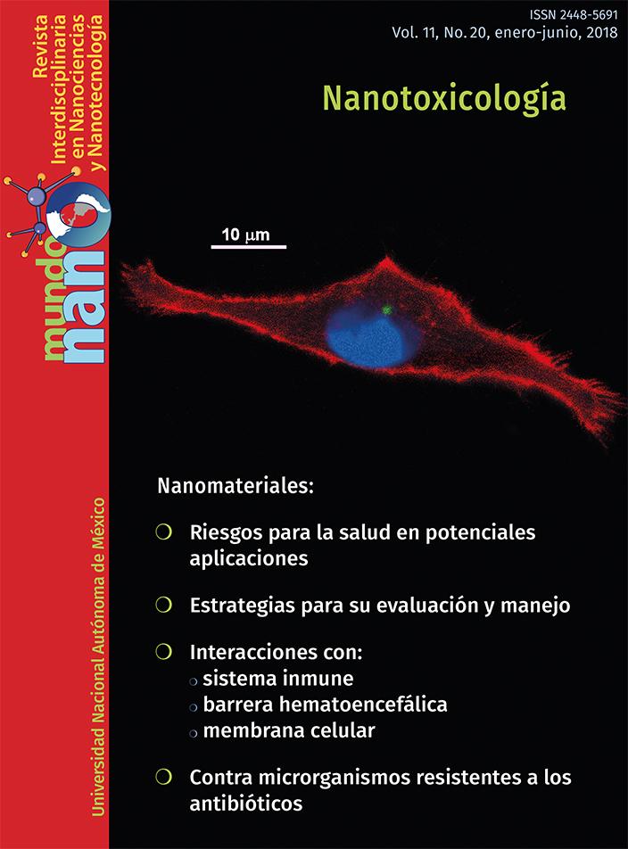 Mundo nano. Revista interdisciplinaria en nanociencias y nanotecnología, vol. 11, no. 20, enero-junio, 2018