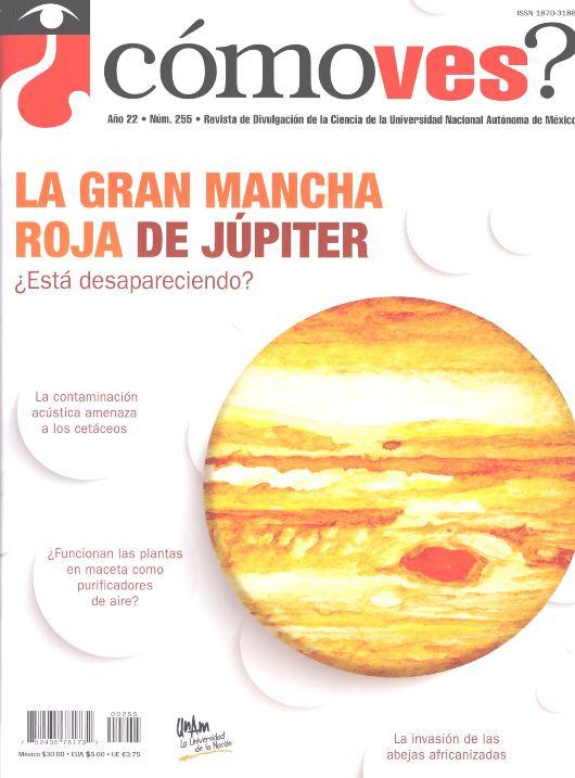 ¿Cómo ves? Revista de Divulgación de la Ciencia, año 22, núm. 255, febrero 2020 La gran mancha roja de Júpiter. ¿Está desapareciendo?