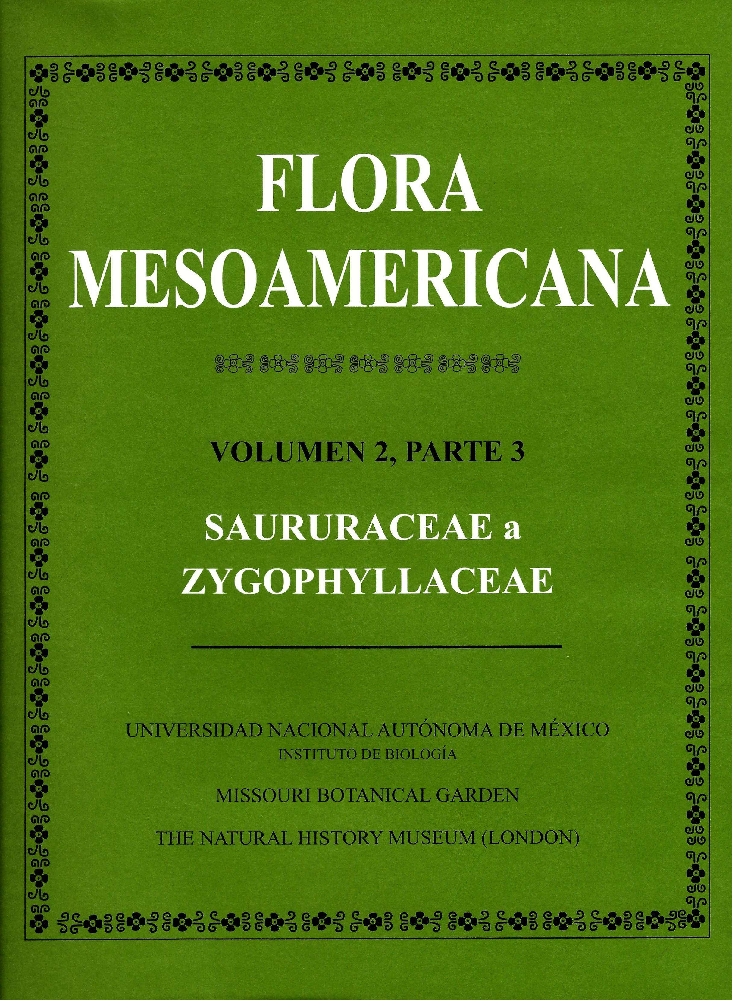 Flora mesoamericana. Vol. 2, parte 3