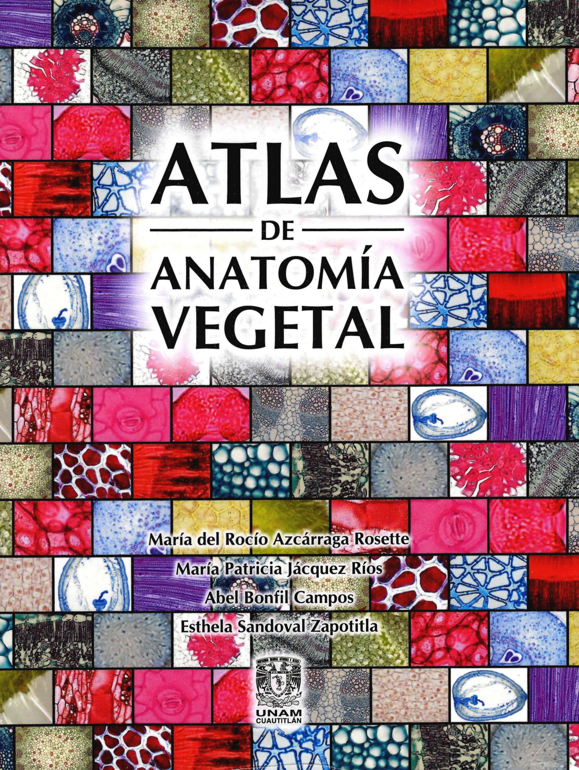 Atlas de anatomía vegetal