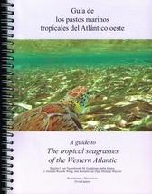 Guía de los pastos marinos tropicales del Atlántico oeste= A Guide to the Tropical Seagrasses of the Western Atlantic