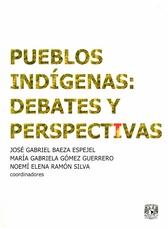 Pueblos indígenas. Debates y perspectivas