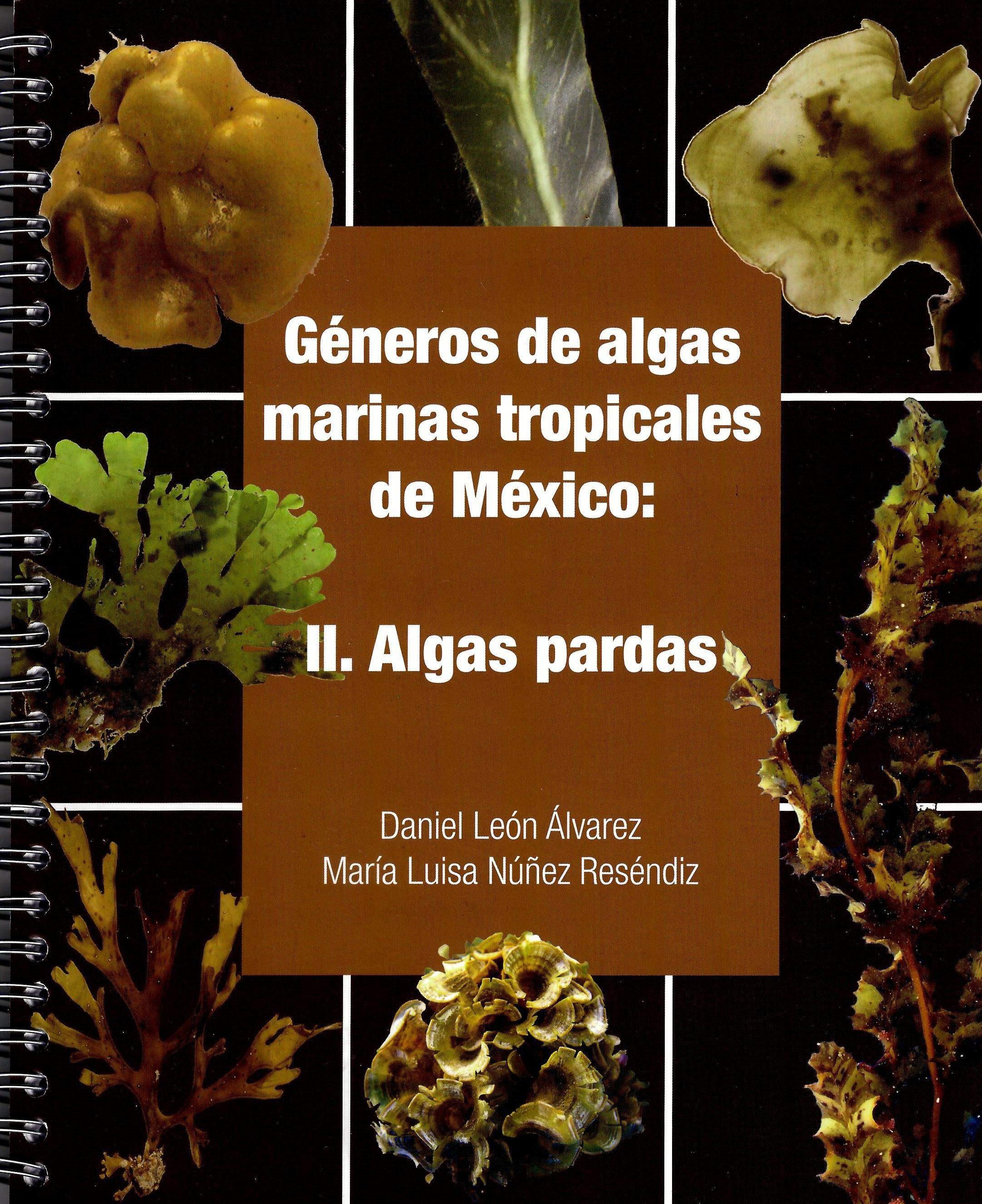 Géneros de algas marinas tropicales de México, II Algas pardas