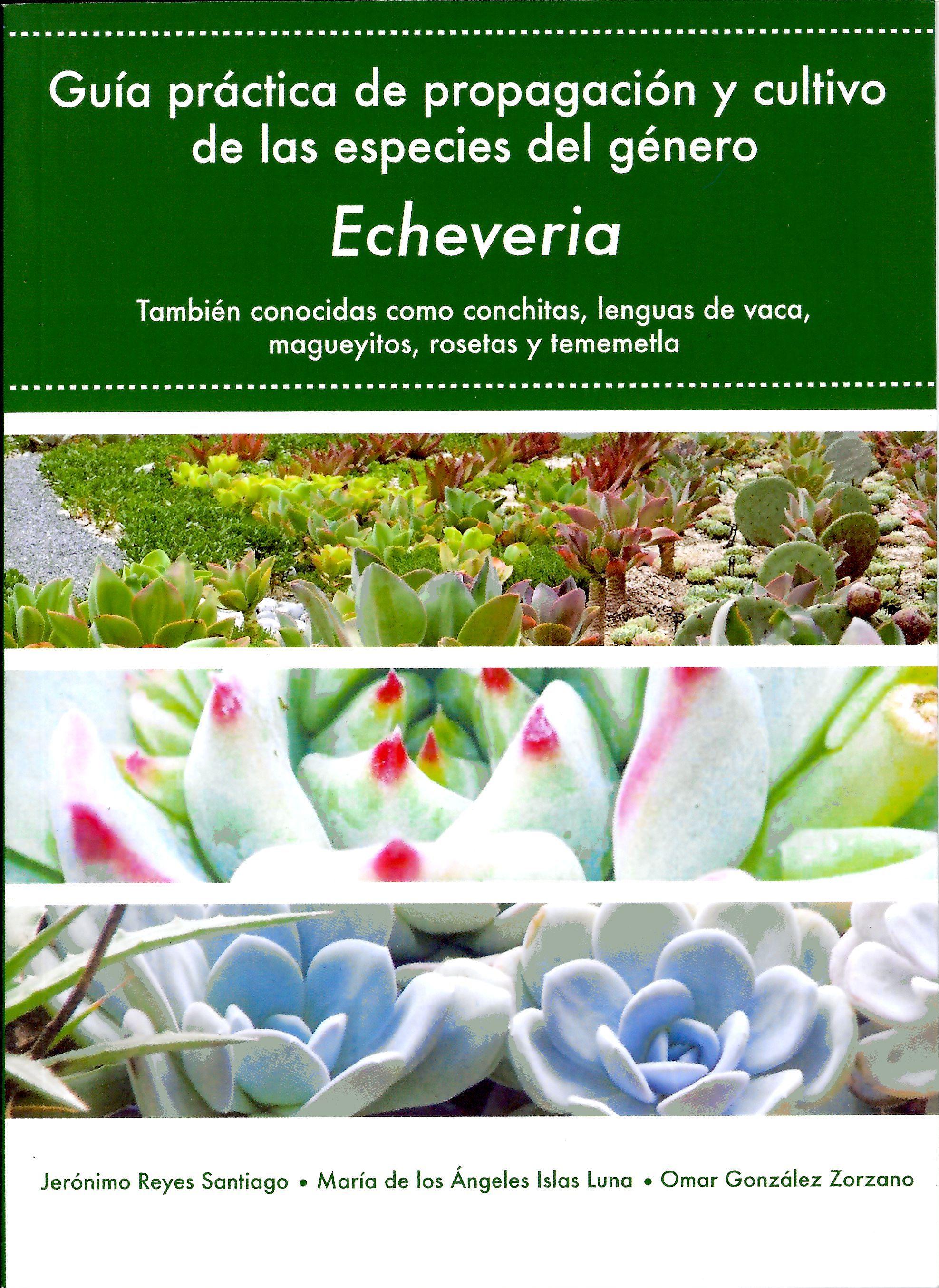 Guía práctica de propagación y cultivo de las especies del género Echeveria.