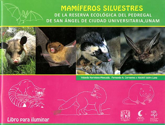 Mamíferos silvestres de la reserva ecológica del pedregal de San Ángel de Ciudad Universitaria, UNAM