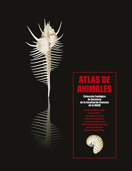 Atlas de animales. Colección zoológica de docencia de la Facultad
