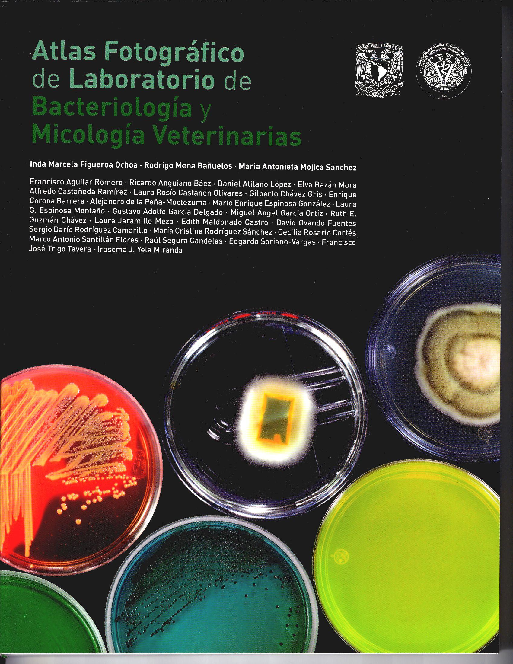 Atlas fotográfico de laboratorio de bacteriología y micología veterinaria