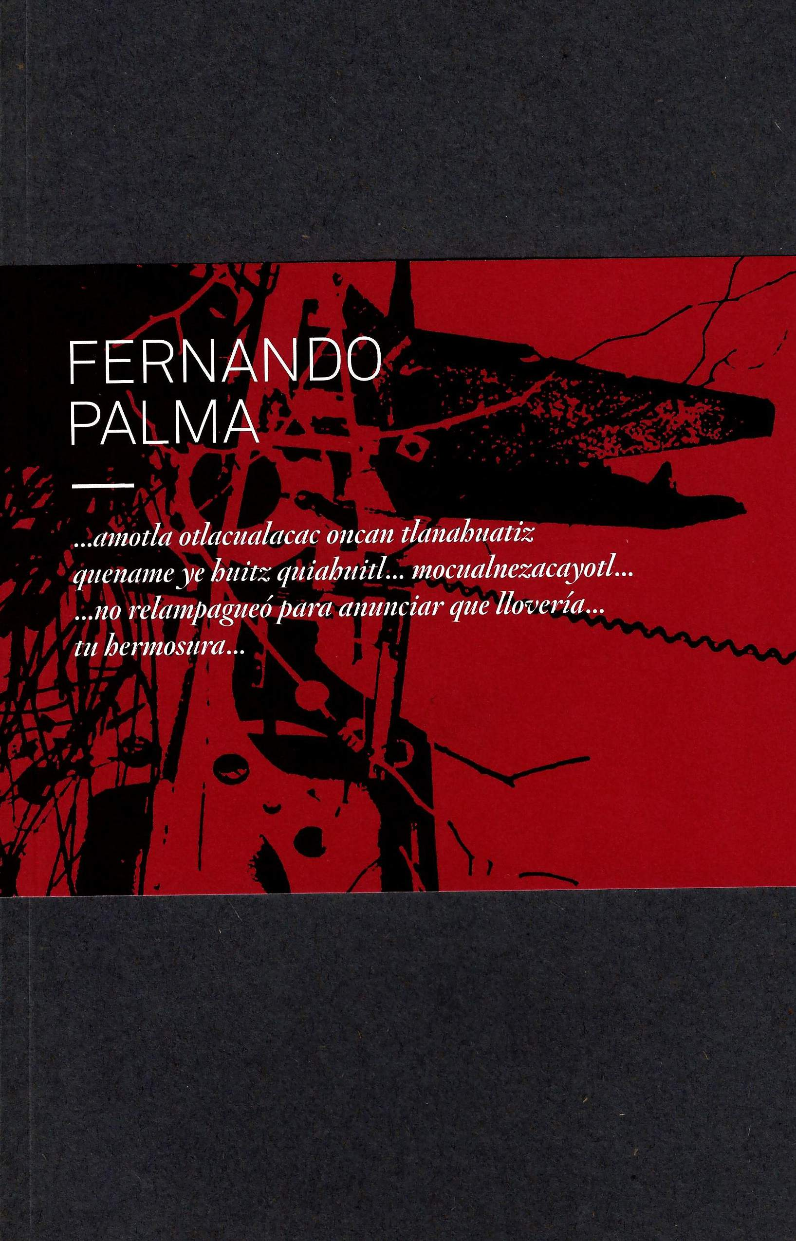 Fernando Palma...amotla otlacualacac oncan tlanahuatiz quename ye huitz quiahuitl...mocualnezacayotl