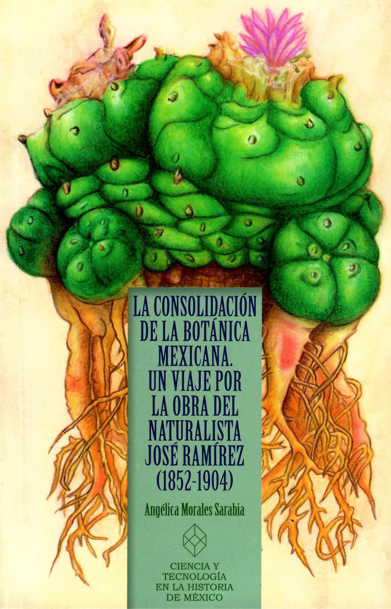 La consolidación de la botánica mexicana: un viaje por la obra del naturalista José Ramírez