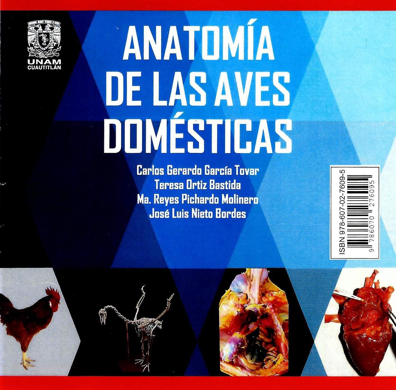 Anatomía de las aves domésticas