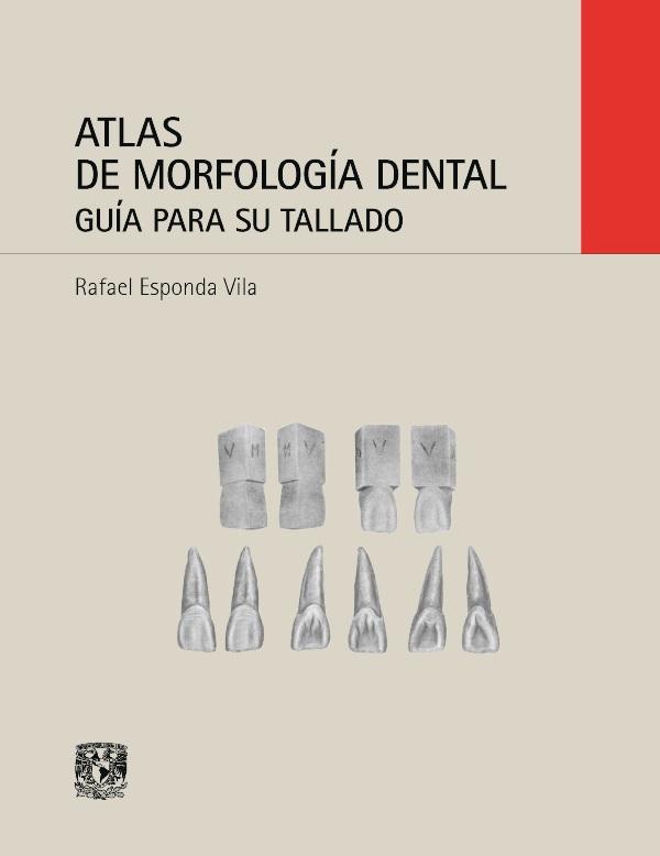 Atlas de morfología dental. Guía para su tallado