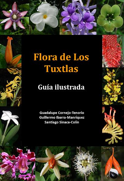 Flora de Los Tuxtlas: guía ilustrada