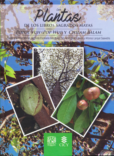 Las plantas de los libros sagrados mayas Popol Vuh (Pol Wuj) y Chilam Balam