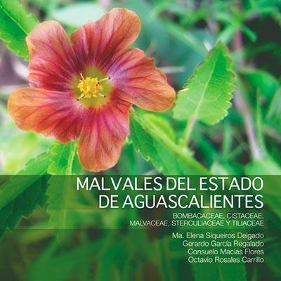 Malvales del estado de Aguascalientes bombaceae cisteceae malvaceae sterculiaceae y tiliaceae