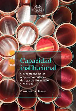 Capacidad institucional y desempeño en los organismos públicos
