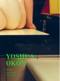 Yoshua Okón. Colateral/Collateral