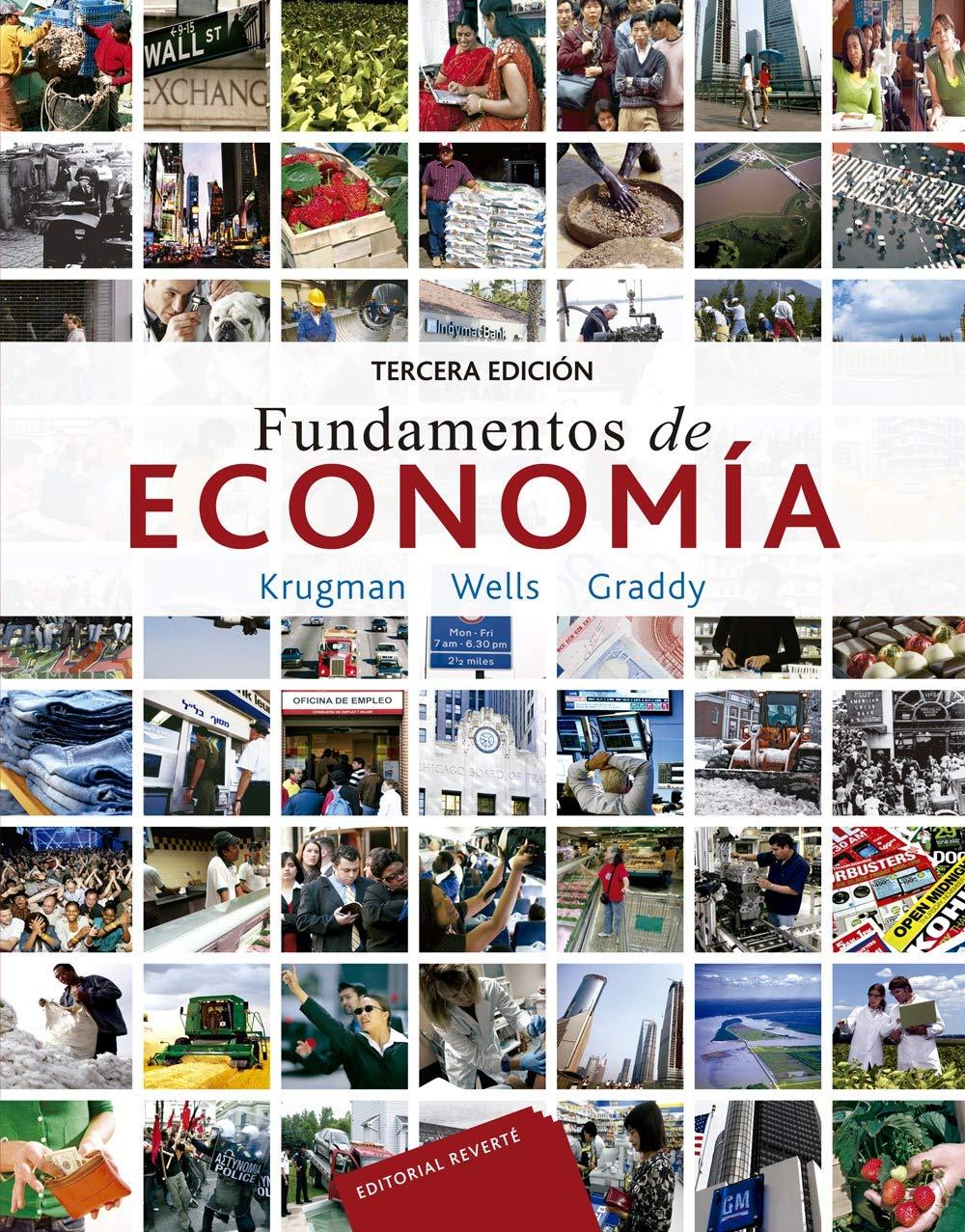 Fundamentos de economia. Particularidades de la capacitacion