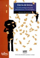 Lluvia de letras. Lección antológica de poesía iberoamericana y de otros lugares. Paseos VIII