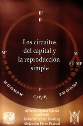 Los circuitos del capital y la reproducción simple. Estudio sobre los circuitos, subcircuitos y secciones del capital industrial en condiciones reproductivas de una economía monetaria estacionaria