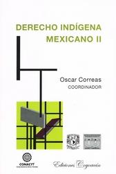 Derecho indígena mexicano Vol. II